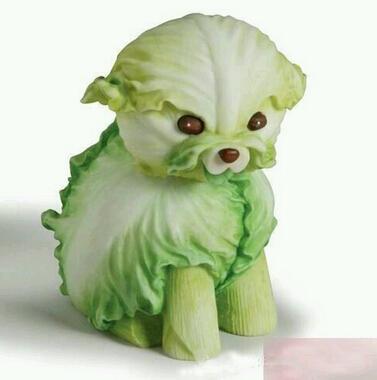 蔬菜清洗方法常识